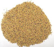 rapeseed meal exporters